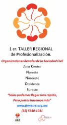 1 er. Taller Regional de Profesionalizaciòn de Organizaciones Renales, Zona  NORESTE